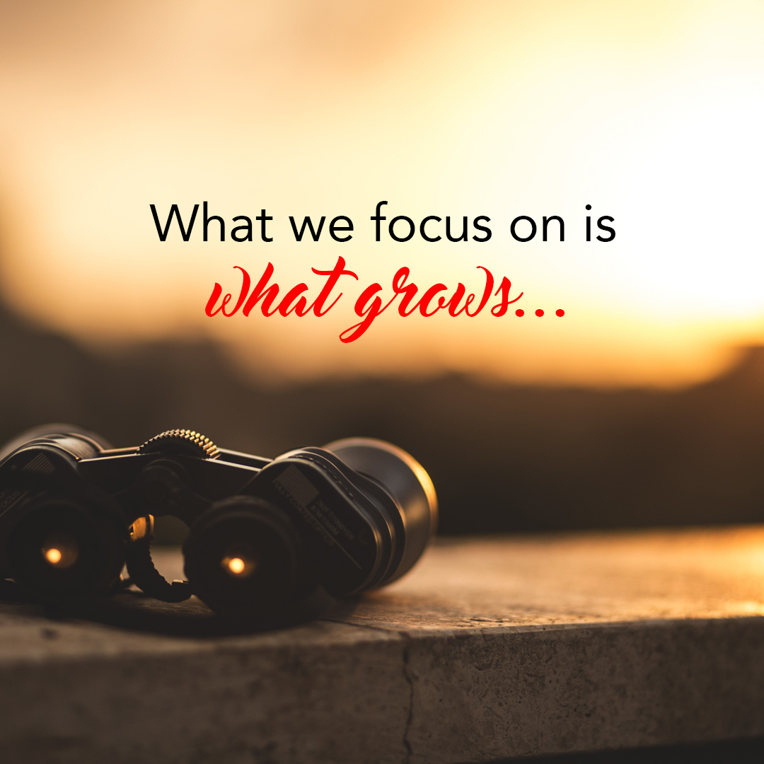 What we focus on is what grows